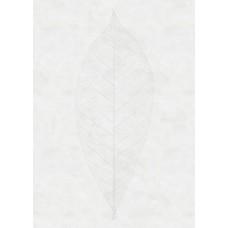"""Обои Komar R2-012 """"Decent Leaf"""""""