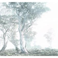 """Обои Komar R3-023 """"Magic Trees"""""""